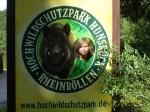 Hochwildschutzpark Rheinböllen